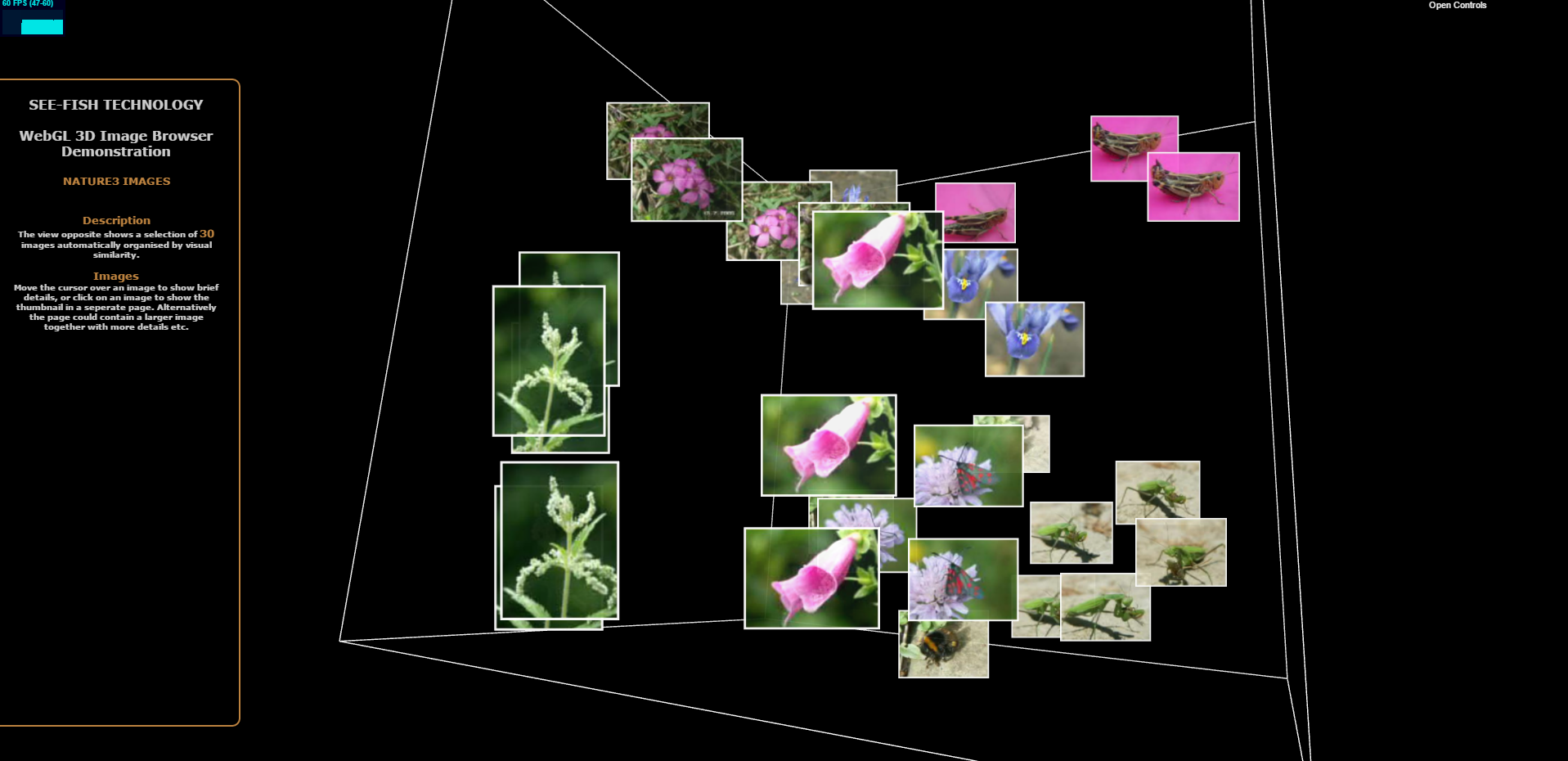 VRML Nature Demo